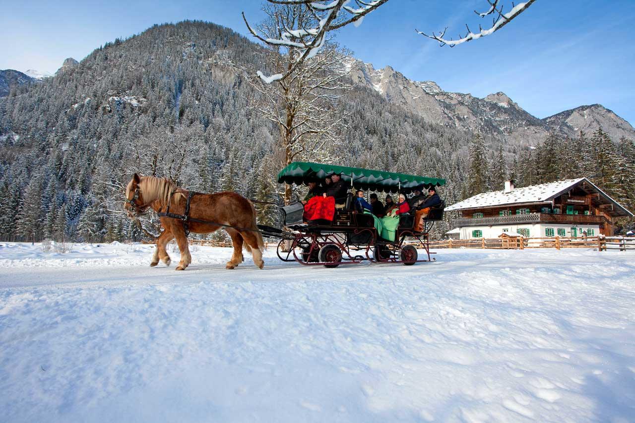 Schlittenfahrt zur Wildfütterung im Klausbachtal am Hintersee